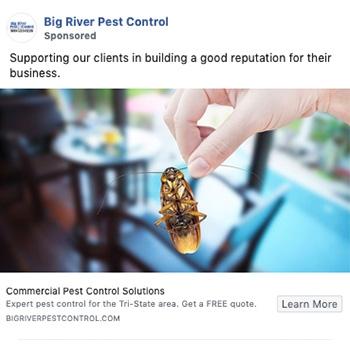 big-river-pest-control-social-media-rethink
