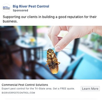 big-river-pest-control-social-media-rethink